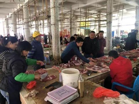 病死猪肉流入市场?江门核查未发现该类产品