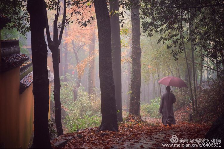 由和尚拍摄的一组照片 觅禅踪 —《佛国》佛系摄影