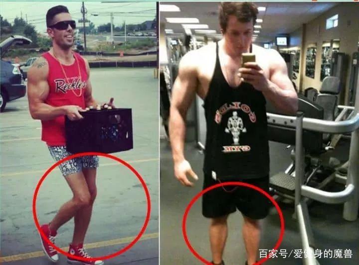 让双腿更雄壮的超级组训练计划
