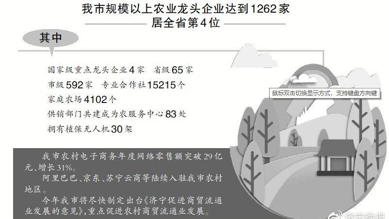 优秀!乡村振兴成绩单亮眼又提气,农文旅融合镇村将成济宁新名片