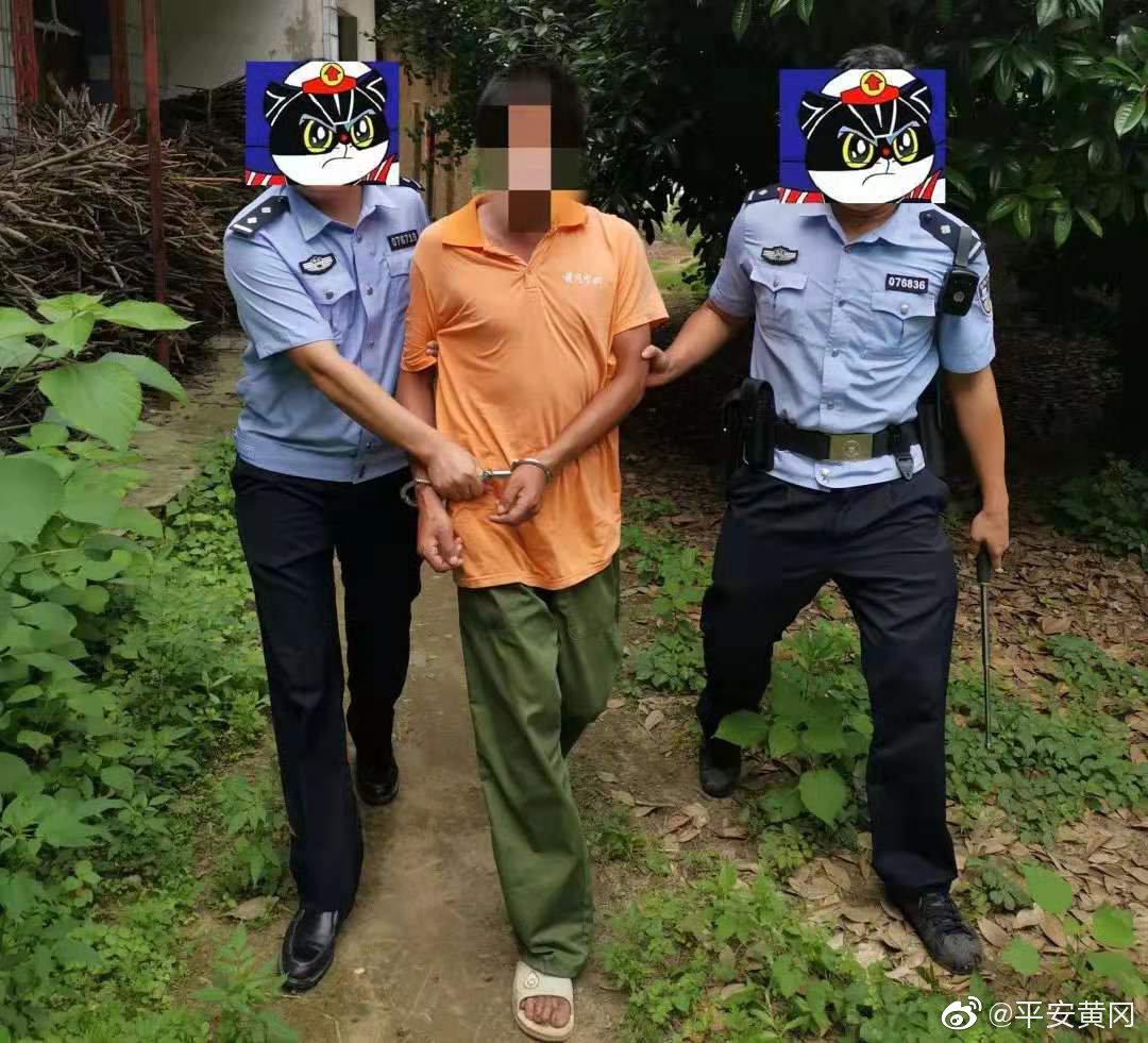 惯犯连续参与作案30余起 浠水警方追踪将其抓获