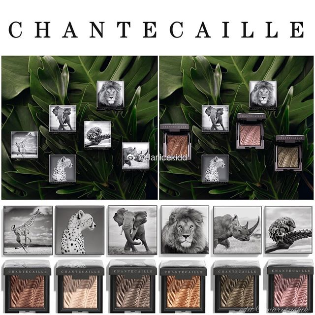 Chantecaille香缇卡非洲之眼慈善系列2019秋季系列关注非洲濒