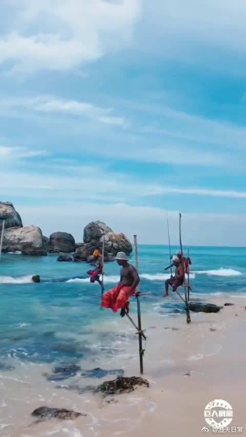 斯里兰卡的穷人买不起船,只能利用这种方式钓近海的鱼,感觉好好玩