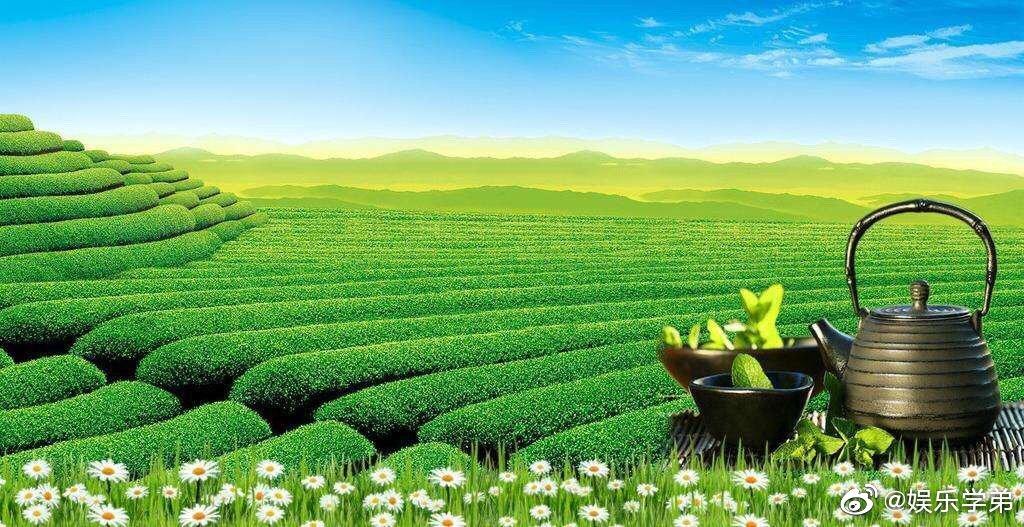 柴米油盐茶,饮茶是生活,是文化,茶除了作为饮料,更承载文化内涵
