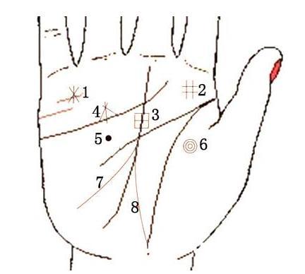 手纹算命掌纹算命图解_简单手诊手表图解_女华为掌纹操作说明图片