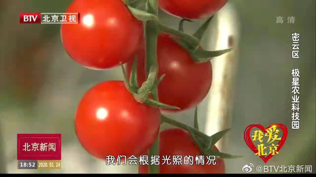 我爱北京:密云区 极星农业科技园