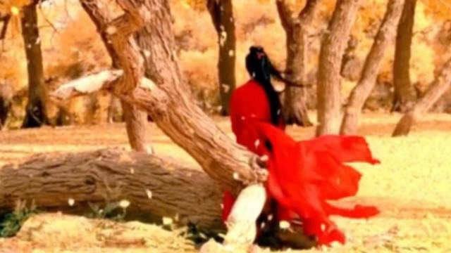 | 红颜一笑便倾城~~~张曼玉、章子怡、刘亦菲、 彭小苒、郭珍霓