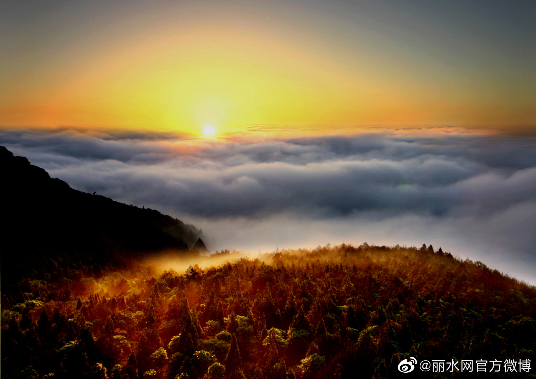 北京传来重大喜讯!丽水将跨入国家公园时代……