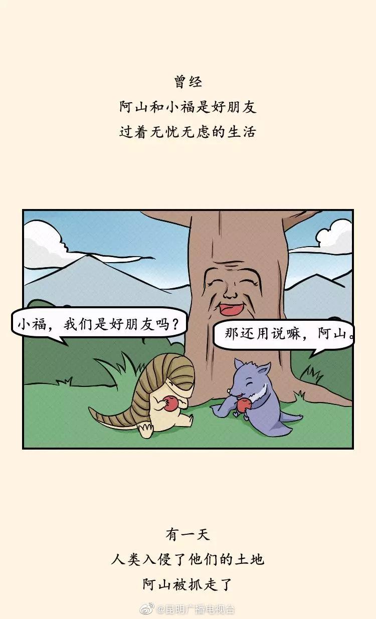 """""""公民十条""""漫画   呵护自然生态 保护野生动植物"""