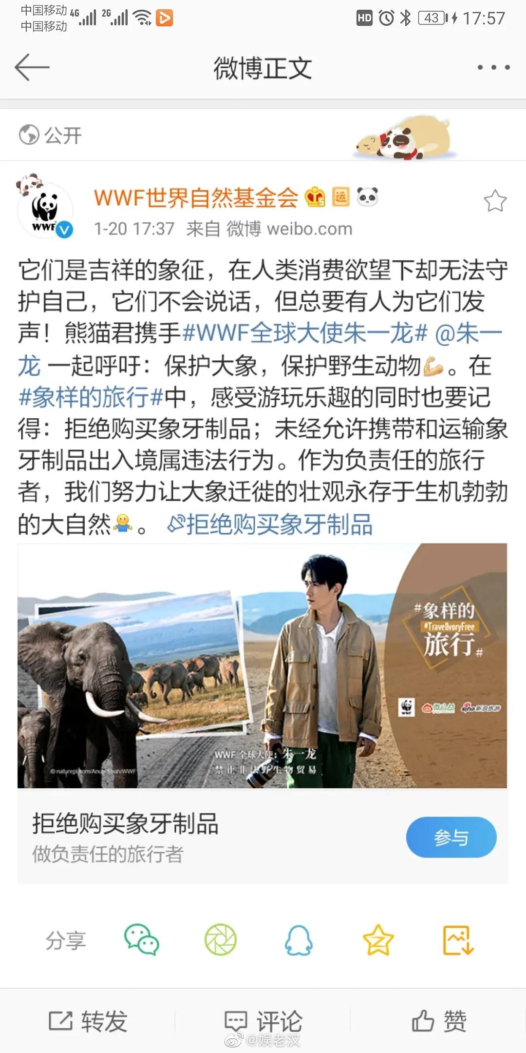 朱一龙WWF保护大象活动,和拢龙一起来做公益吧!