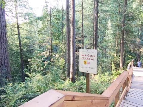 来走走吊桥,恐高的我眼镜只能看前边,为什么这里常年有受伤者?