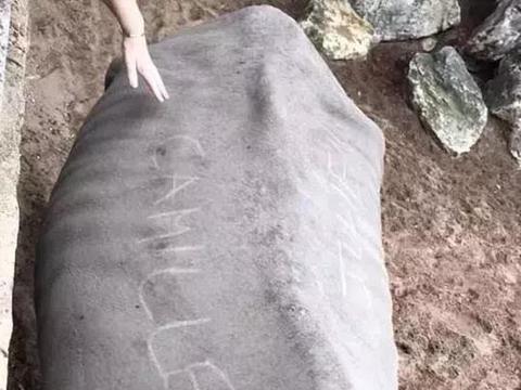 疑情侣竟然在犀牛背上刻名字,园方表示很愤怒,但不会采取法律
