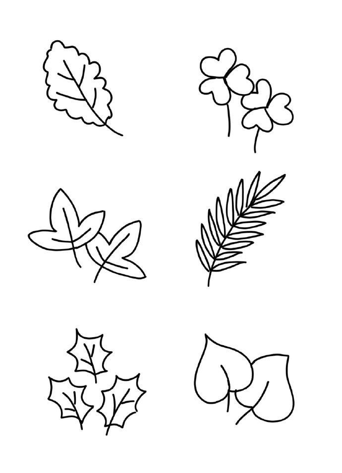树叶叶子卡通简笔画手账素材,好全啊