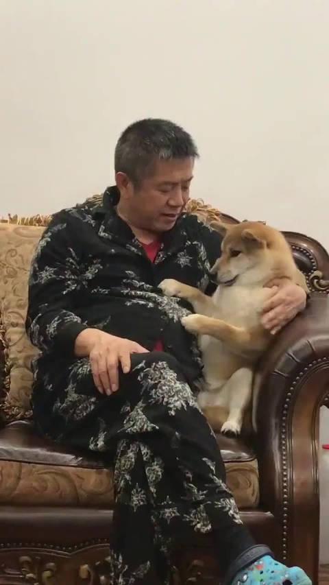 老爸安慰掉牙的狗子,当年我掉牙的时候对我都没有这么好