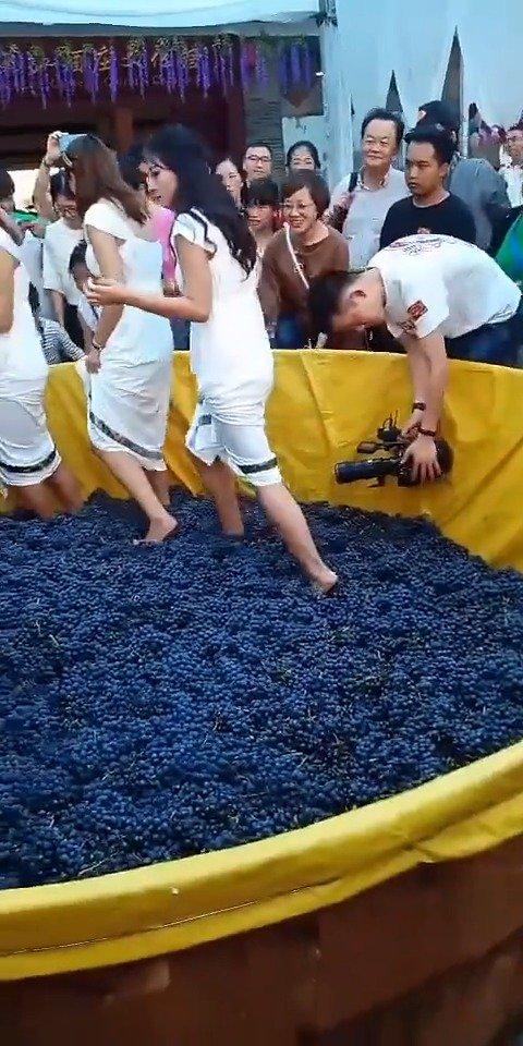 酿葡萄酒,大妈们非要体验一下。