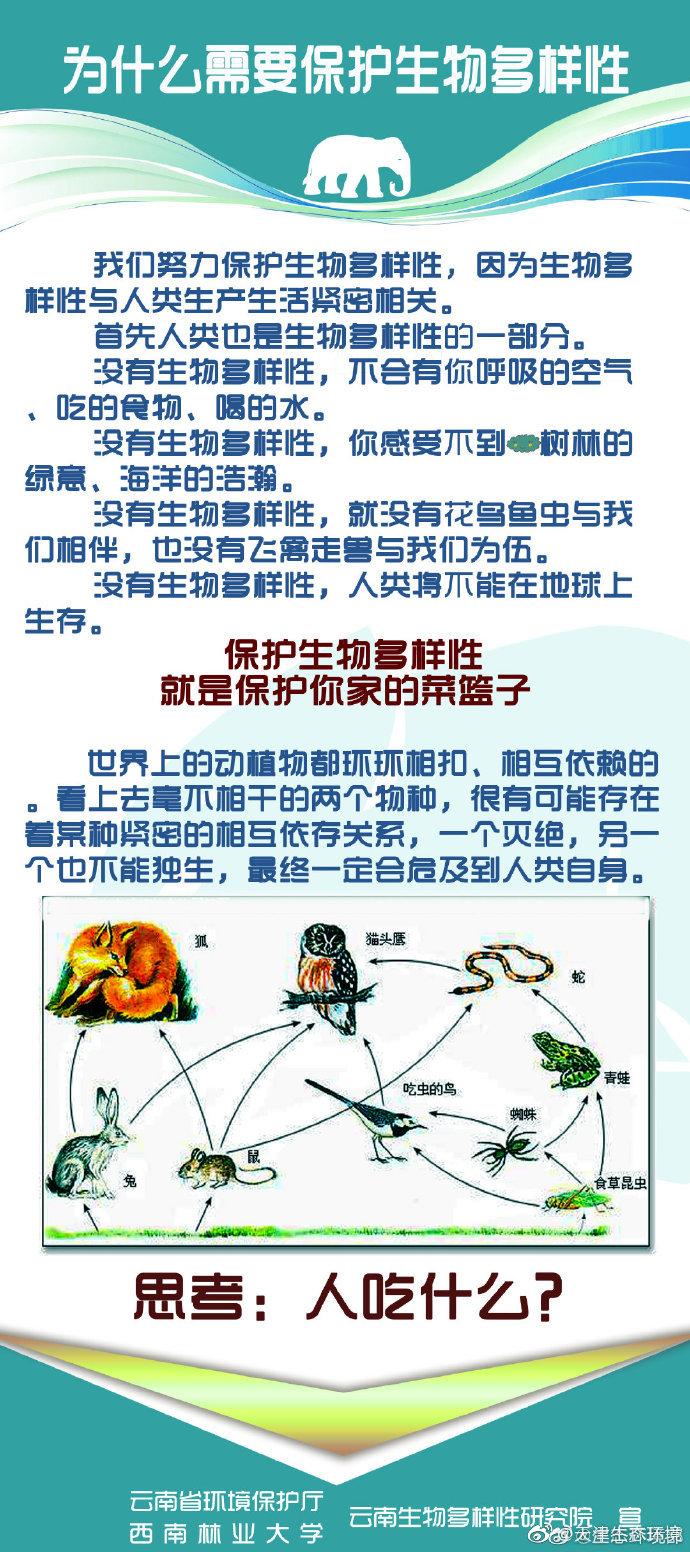 优秀生态环境宣传产品(11)|保护生物多样性,需要你的行动(海报)图片