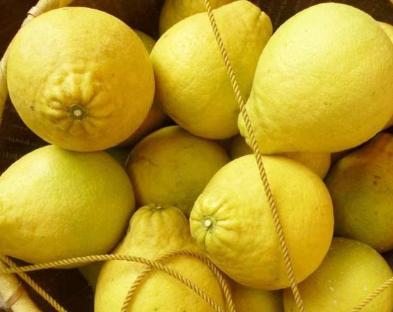 柚子也分公母?教你如何挑选好吃的柚子?记住3点,个个汁多肉甜