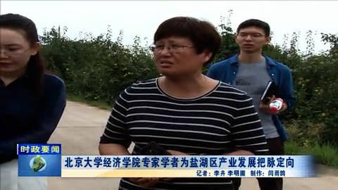 北京大学经济学院专家学者为盐湖区产业发展把脉定向
