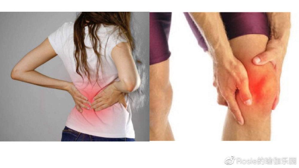 下背部僵紧,脊柱侧弯,怎么调理?运动量大、久站,膝盖疼?每周20问