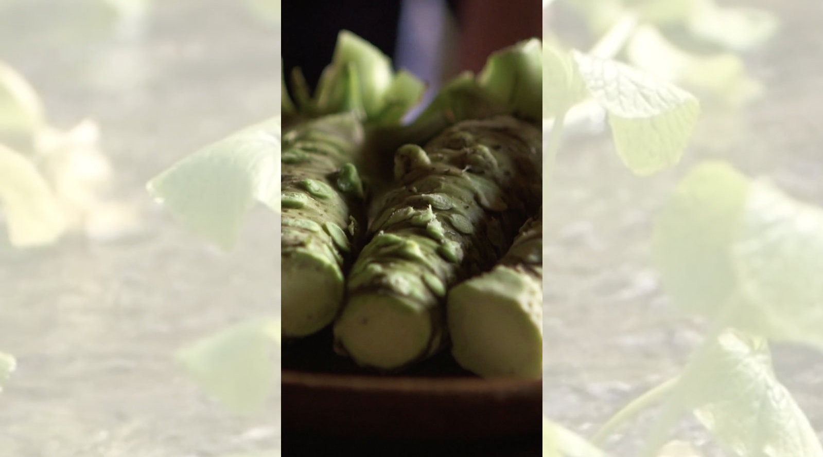 静冈的山葵