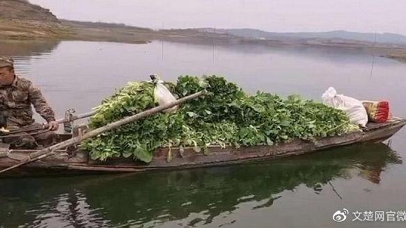 广水:儿子当民警一线执勤 父亲送来两千多斤鱼和蔬菜