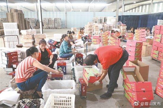 精准施策 点面结合 推动全区农民合作社高质量发展