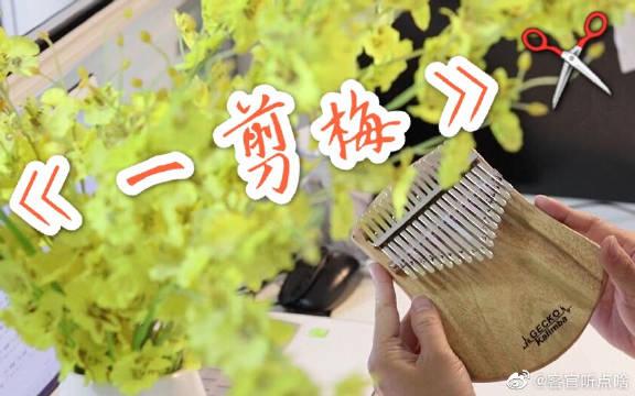 《拇指琴》一剪梅,我听出了袁华的绝望,这道题太难了!!!