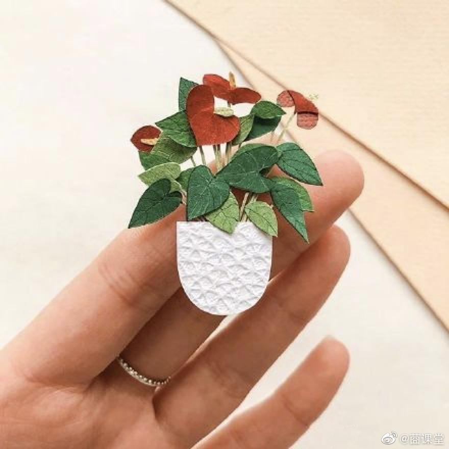 纸质可爱的绿色植物