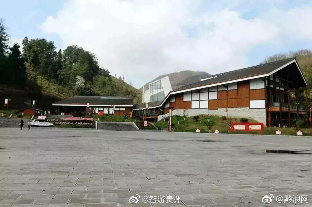 上海苟坝红色攻略旅游景区文化钓鱼遵义湖滴水图片