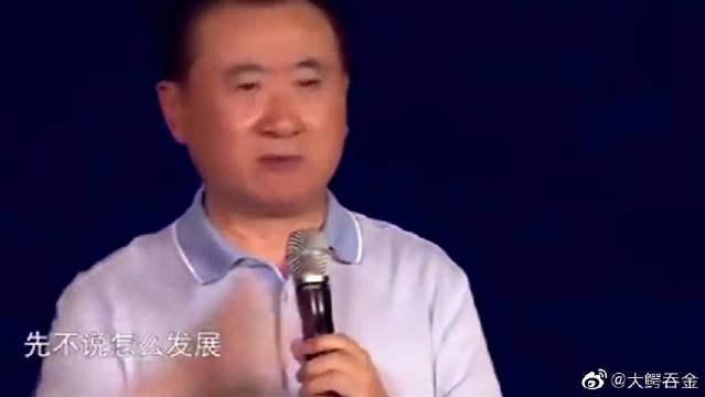 王健林:努力奋斗可以弥补才智的不足,只要功夫深铁杵磨成针!