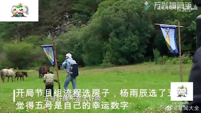 陈小春饺子嘉士伯,杨烁的挫折式教育,太可怕