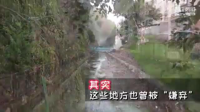 """2019江苏住建民生实事成果纪实 黑臭水体""""变身""""小清新"""