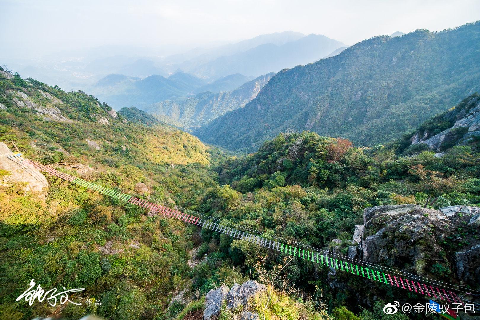 浙江,安吉,云上草原,山顶上的云层的下面覆盖了90%生态竹林