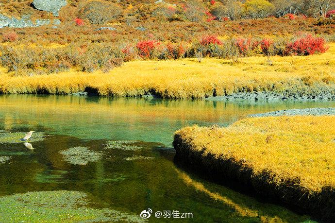 每到秋天,就是稻城亚丁最美的时候