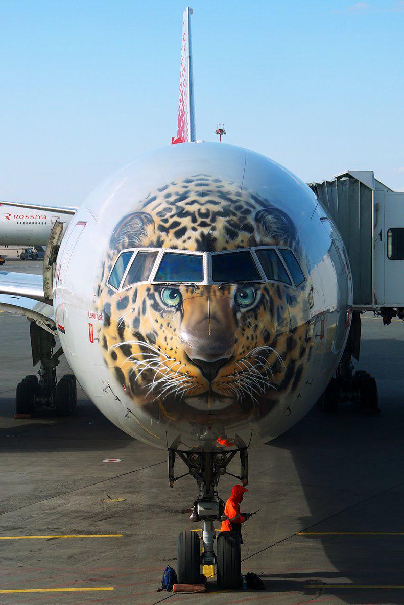 远东豹 Boeing 777  俄罗斯为一架波音777-300宽体长途客机涂装最稀