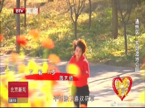我爱北京:通州区 东郊湿地公园