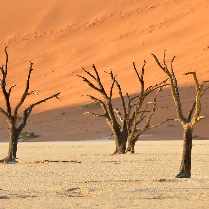 纳米比亚红沙漠是世界最古老沙漠,著名的死亡谷也在其中