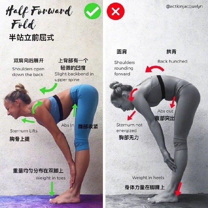 """9个瑜伽体式""""力的走向图""""初学者知道""""怎么练""""很重要 (>"""