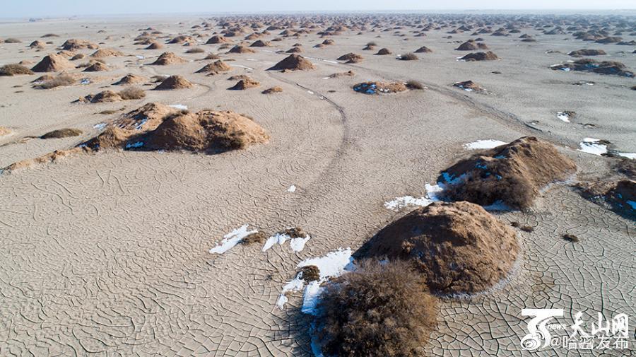 一提起戈壁滩,好像与雪没多大关系似的,可在伊州区南湖戈壁
