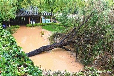 3730m/s 黄河兰州段昨现今年以来最大流量