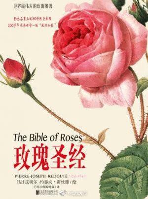 《玫瑰圣经》本书以大师雷杜德的绝伦画笔