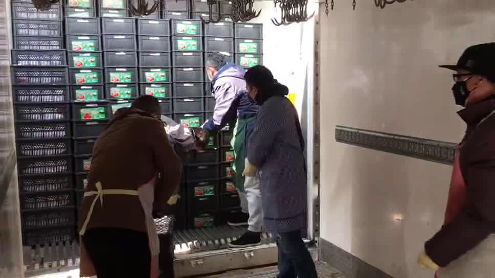到达武汉洪山区物流园的山东寿光优质蔬菜正在进行分装