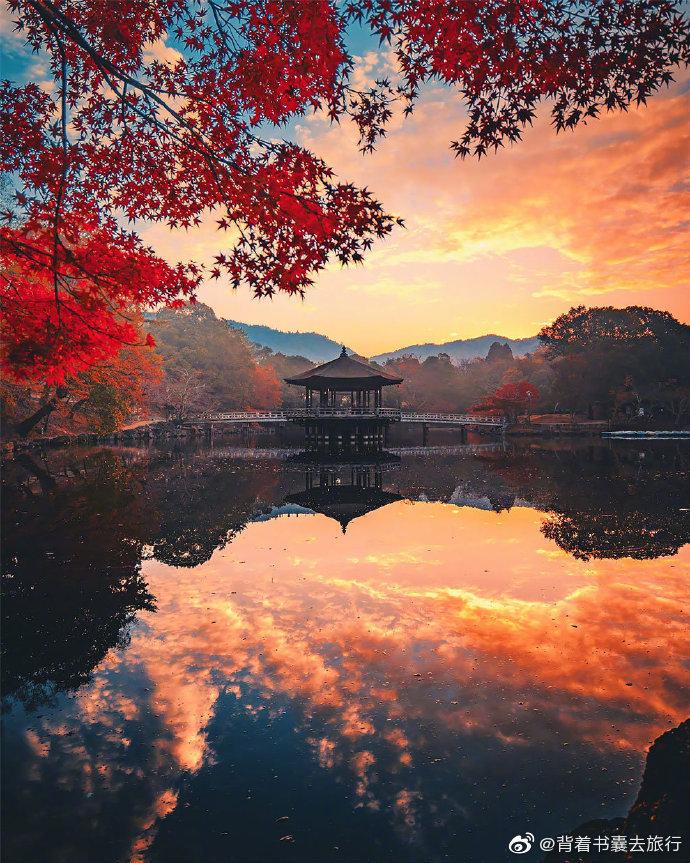 京都和奈良的秋。