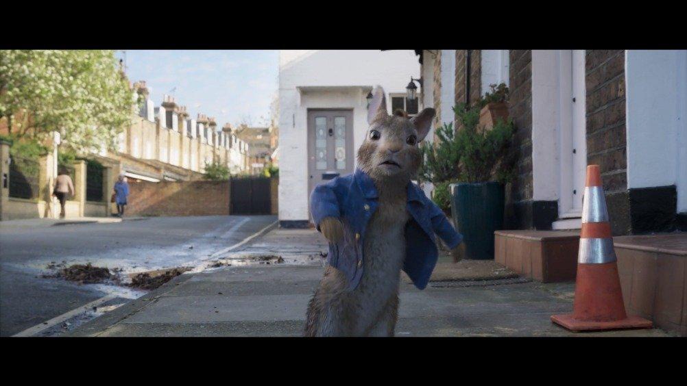 萌翻天! 发布先导预告!男女主喜结连理,兔兔们向城市进发