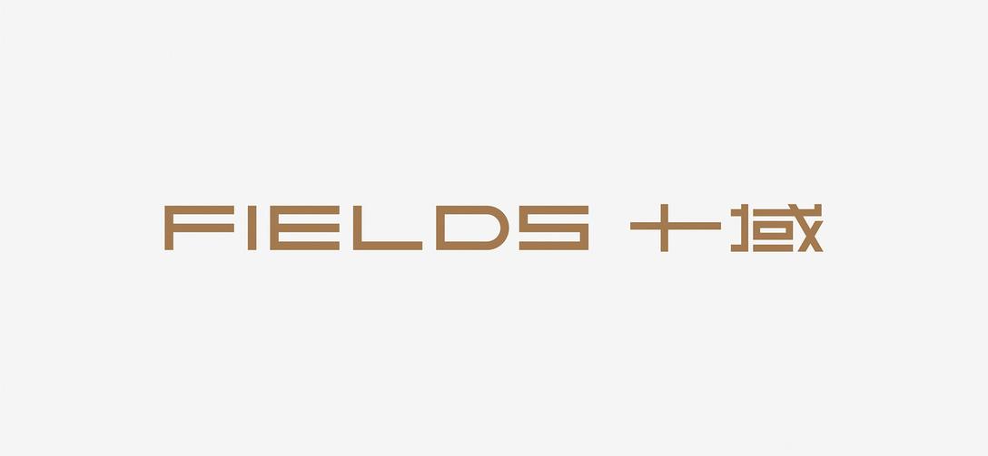 FIELDS 十域咖啡馆品牌logo设计和VI设计