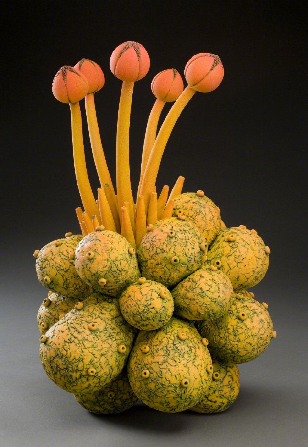 幻想中的动植物 | 陶瓷艺术家 William Kidd @微博艺术