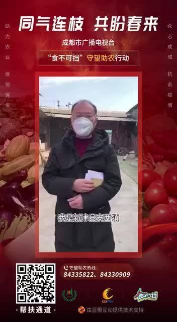 受疫情影响的还有畜牧业,新津鹌鹑养殖户滞销近4万斤鹌鹑蛋