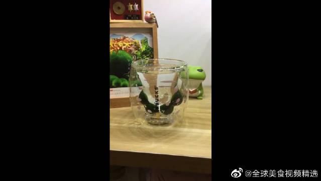 过气的猫爪杯里养球藻君,被抛弃的也就是绿色了!