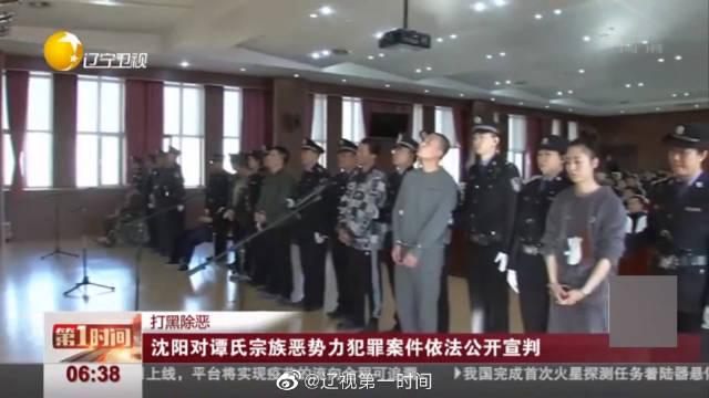 沈阳皇姑法院对谭氏宗族恶势力团伙依法公开宣判 8人获刑
