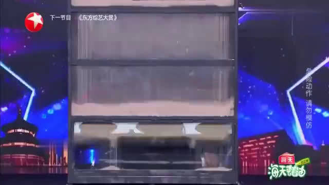 中国达人秀沙箱逃脱险酿事故,金星杨幂直接灭灯,不料结局